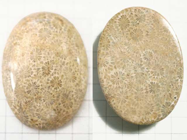 ST191TA 35.5×25.7 オーバル 菊目石