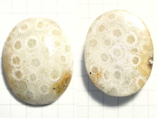 STK173T 28×22.5 オーバル 菊目石