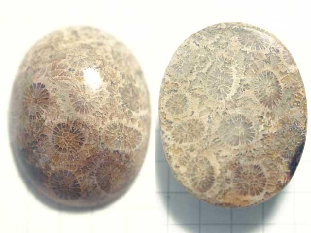 STK179T 28.3×22 オーバル 菊目石